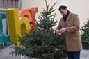 """Коледни дръвчета на стълбите на """"Каменица"""" очакват своята украса от пловдивчани"""