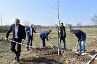 """Над 2100 са новозасадените дървета в """"Лаута"""" за последните години. Паркът се увеличи с 80 декара"""