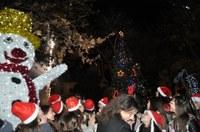 С фойерверки и настроение запалиха светлините на Коледната елха в Пловдив