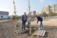"""Започна залесяването на новия парк на площ от 11 декара в район """"Тракия"""""""